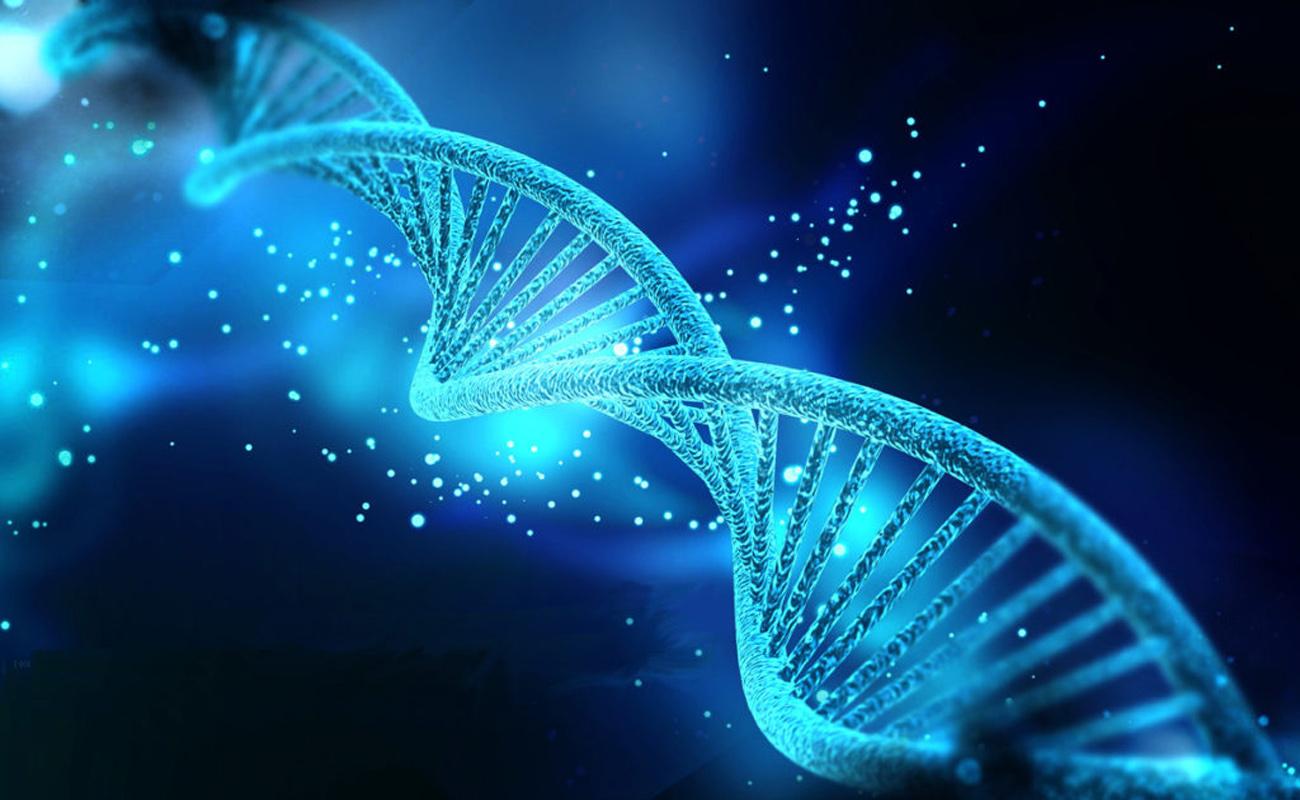 Health-Wellness-Lifestyle-Biohacking-Nutrigenomics-Nrf1-Nrf2